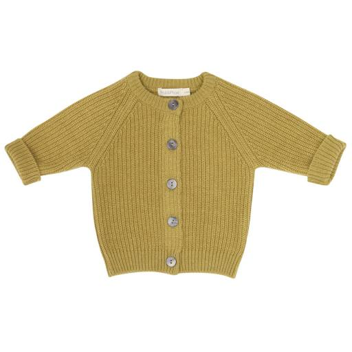 "Phil & Phae - Cardigan ''Cashmere-Blend Baby"", avocado"