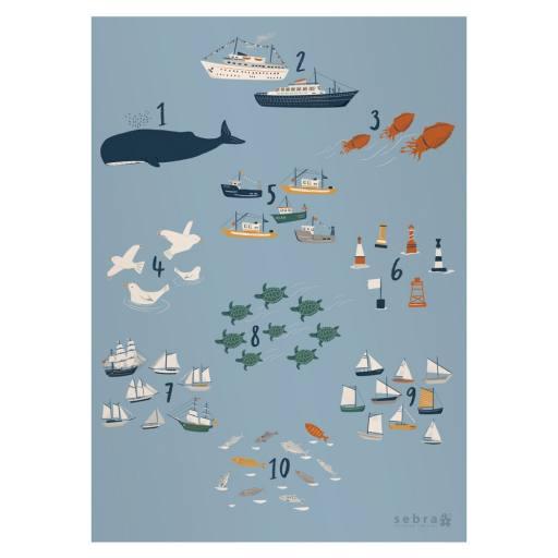 Sebra - Zahlen-Poster ''seven seas''